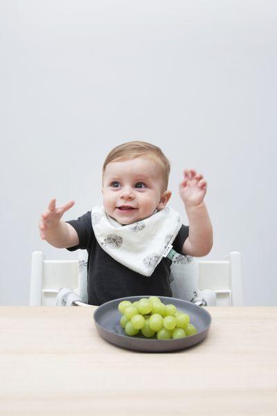 Trixie Baby Śliniak bandana Blowfish - Pan Talerzyk