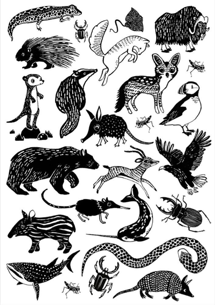 Petit Monkey Tatuaże zmywalne Black Animals - Pan Talerzyk